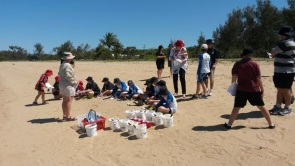 Sandcastles demonstrate the effects of coastal development on the Reef