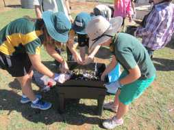 Reef Guardians Schools and Science Week in Charters Towers