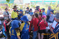 Ingham Science Week celebrations continued